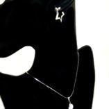 sterling-silver-earrings-hoop-Star-zirconia-2.5cm