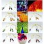 swarovski-crystal-flora-fauna-set