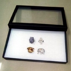 Rings Earrings jewellery case 36 slots